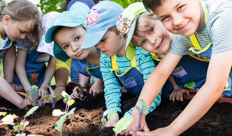 """Patenschaft bei der Aktion """"Gemüsebeete für Kids"""""""